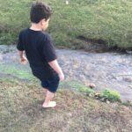 A walk in the creek.