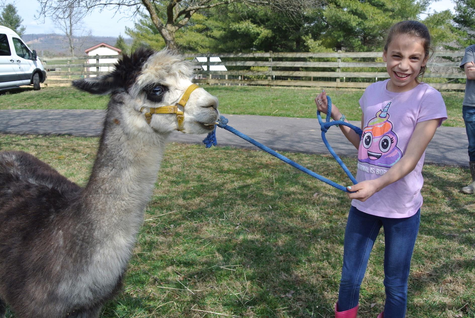 julia with llama